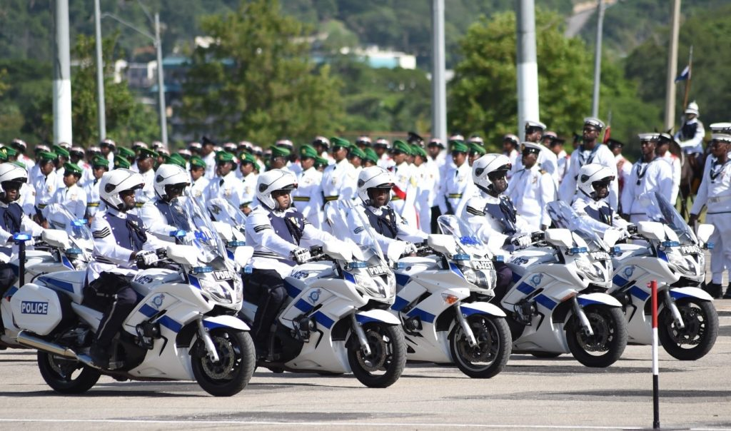 National Security forces on parade